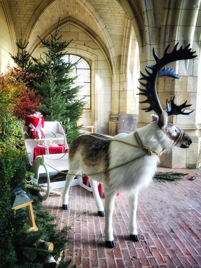 La Touraine fête Noël. Réouverture des sites touristiques en Touraine en décembre 2020 pour les vacances de Noël. Musées, châteaux, aquarium...