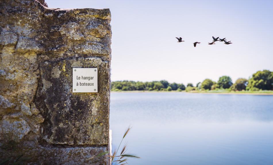 Randonnée autour de l'étang du Louroux