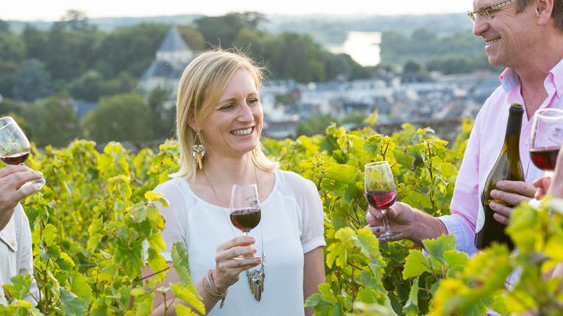 Dégustation des vins de Touraine
