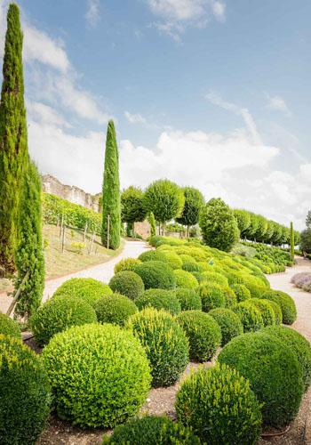 Jardin du château royal d'Amboise