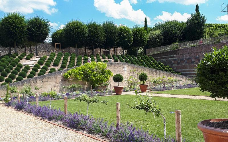 Jardin de Naples - Château royal d'Amboise