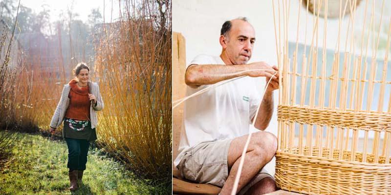 Vannerie d'osier, à Villaines-les-Rochers (France). Tressage de brins d'osier blanc à partir de saule. Paniers en osier de couleur selon les variétés, haies d'osier vivant...