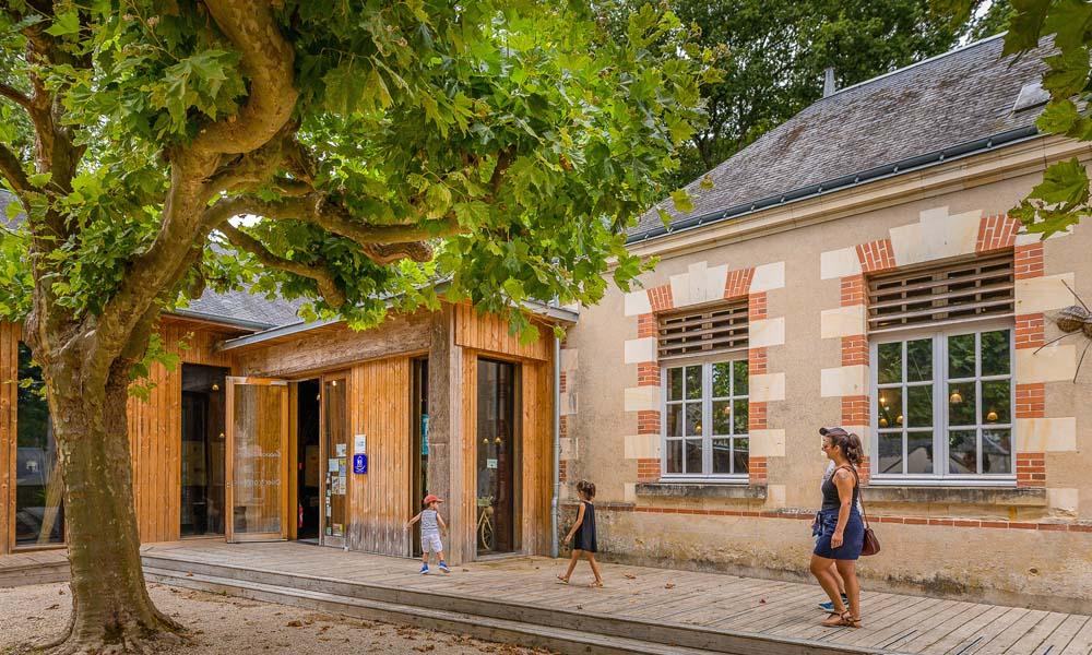 Osier et vannerie à Villaines-les-Rochers