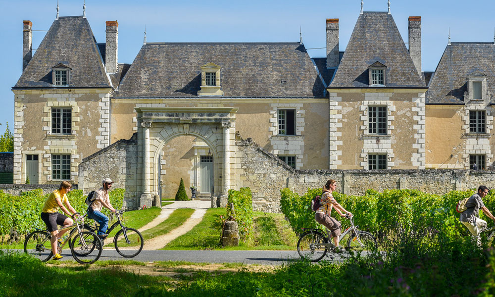 Le vignoble de Bourgueil à vélo