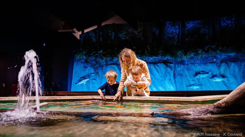 Le bassin tactile du Grand Aquarium de Touraine