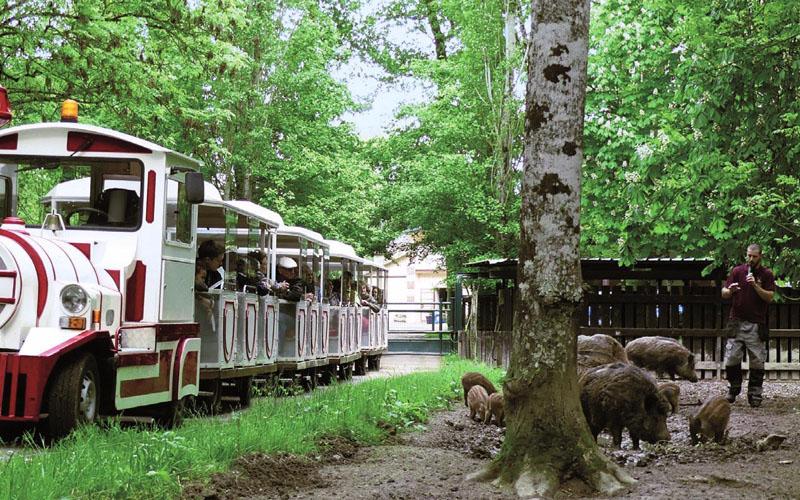 Réserve de Beaumarchais - Le parc des sangliers