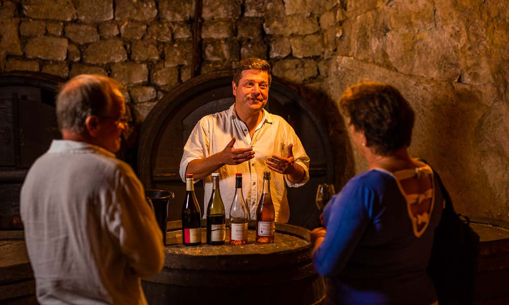Dégustation des vins de Bourgueil et Saint-Nicolas-de-Bourgueil
