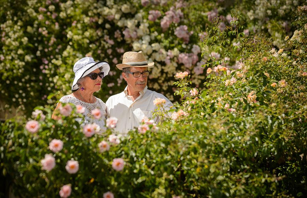 Les rues de Chédigny : un jardin de roses.