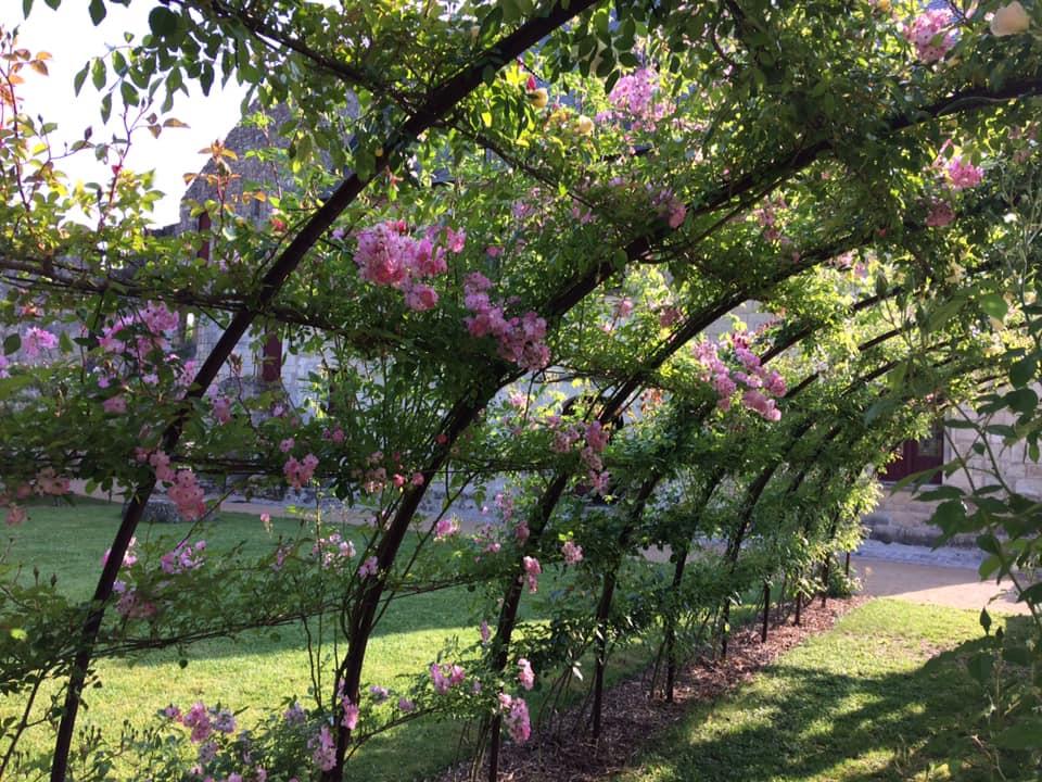 Pergolas de roses - Prieuré Saint Cosme, demeure de Ronsard
