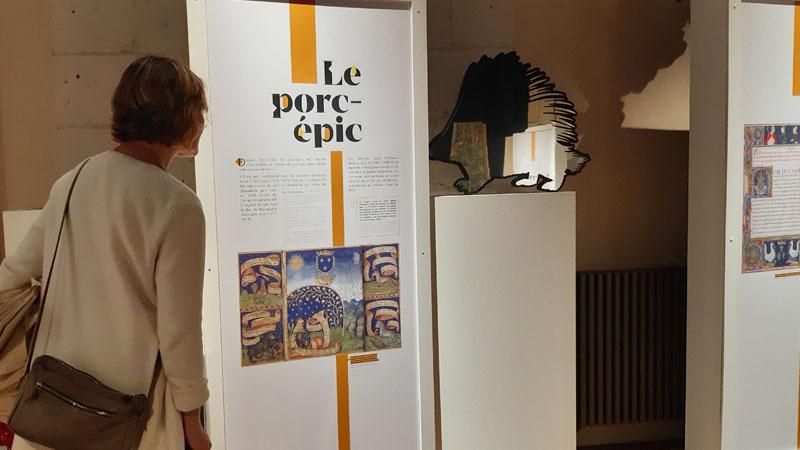 Exposition Animalis - Le porc-épic