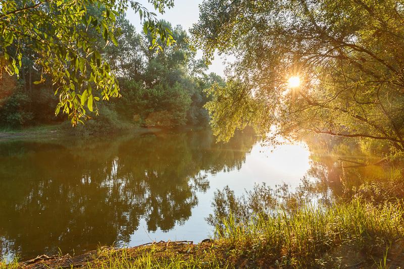 Berthenay, lieu idéal pour un pique-nique en bord de Loire.