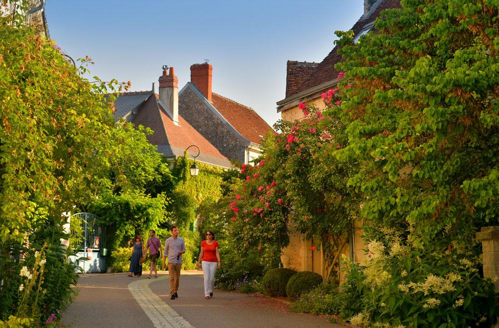 Les roses de Chédigny, un village haut en couleur !