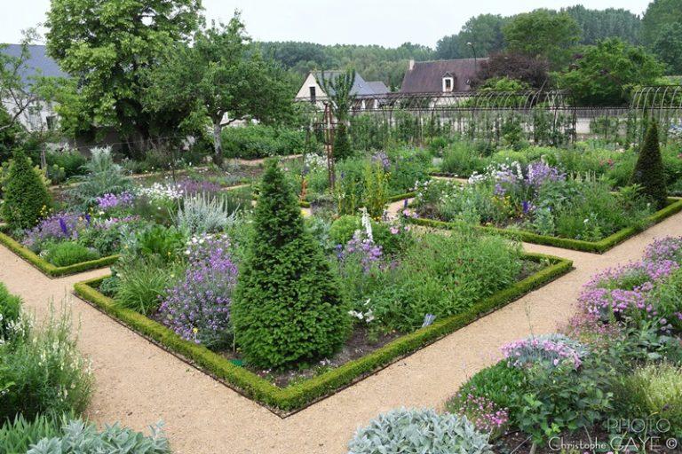 """Village de Chédigny """"Jardin Remarquable""""et fleur d'or-11"""