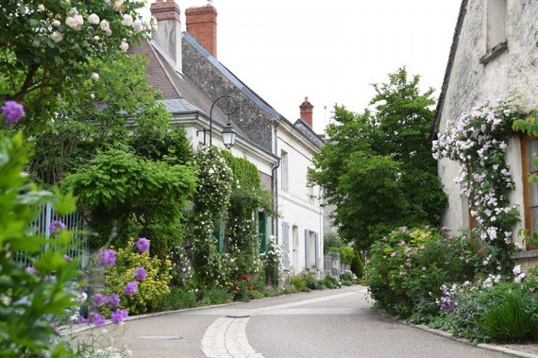 """Village de Chédigny """"Jardin Remarquable""""et fleur d'or-2"""