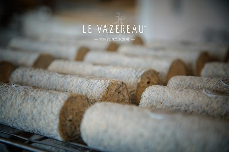 Les buches de Sainte-Maure-de-Touraine, succulent fromage de chèvre de France avec une paille de seigle en son centre, qui cohabite avec d'autres fromages tels le Chavignol, la pyramide de Valençay, le Pouligny-Saint-Pierre, le Selles-sur-Cher, le Pélardon, le chabichou, le Rocamadour, le chavrou, le soignon...