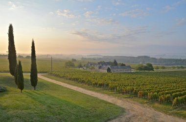 Domaine de Beauséjour – Panzoult