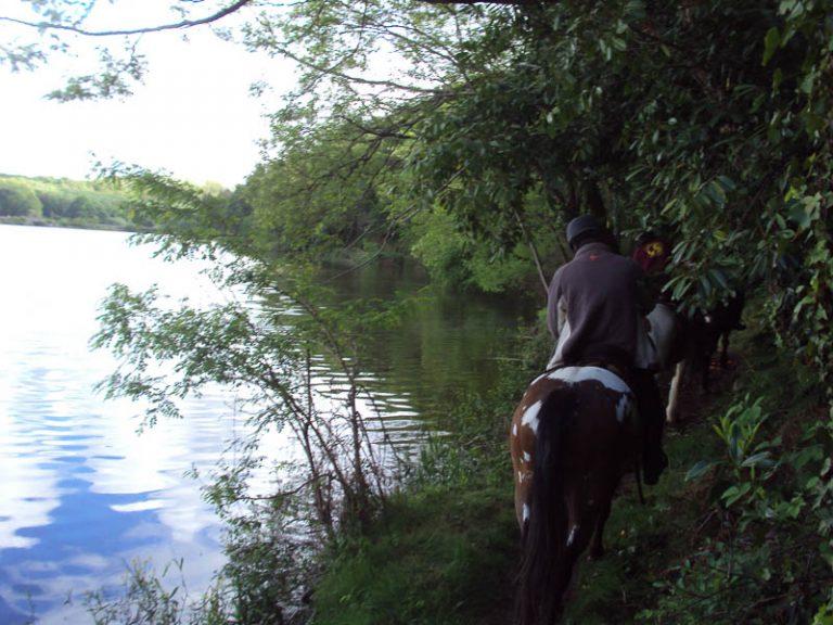 L'Alezane – enseignement équitation de loisirs et fédérale-3