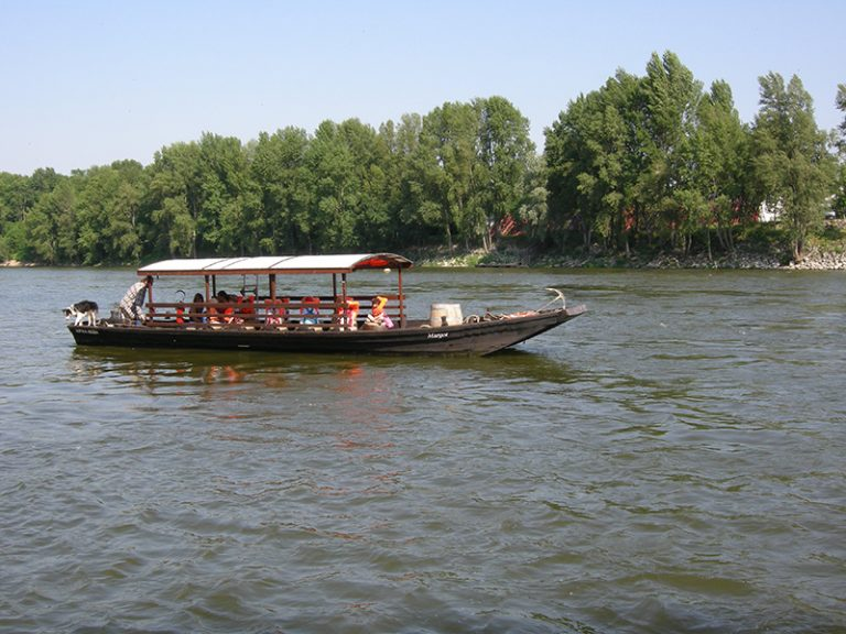 Balade en bateau sur la Loire – Boutavant-8