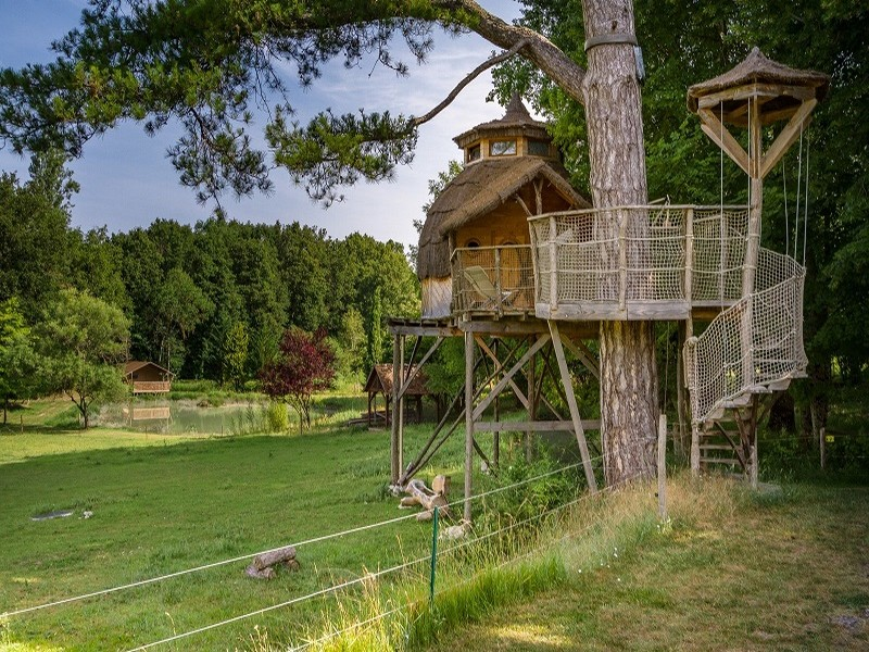 Cabane dans les arbres - Domaine de la Roche Bellin