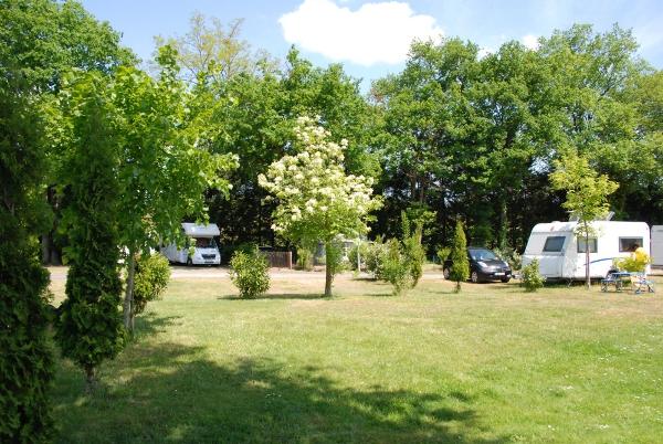 Camping Les Acacias-2