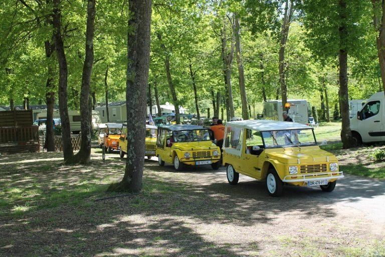 Camping Les Acacias-10