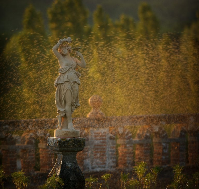 Château de Valmer – Vins et Jardins-6