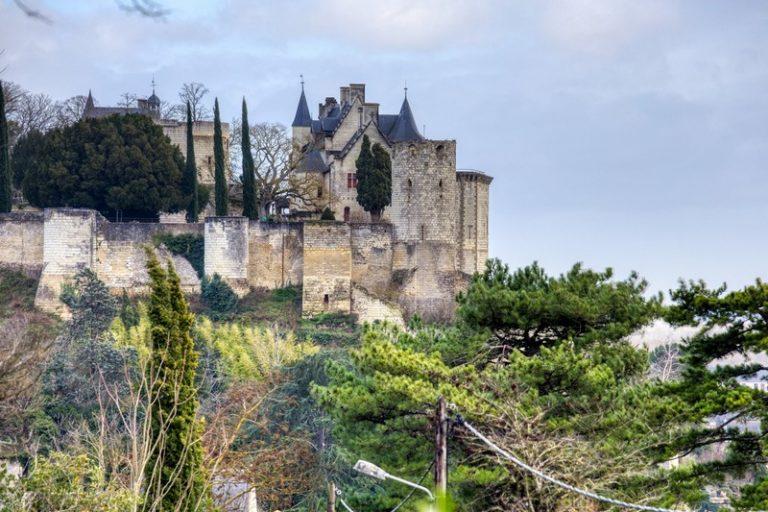 Château Satis Morituro et son logis (Gîte de groupe pour 14 personnes)-31