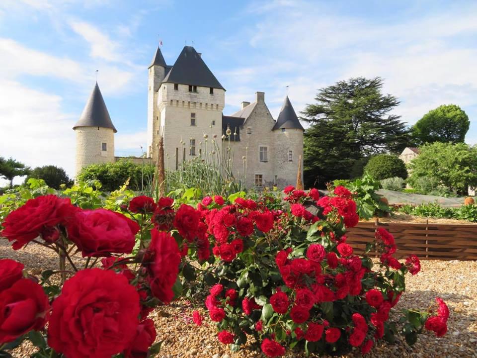 Les roses du château du Rivau