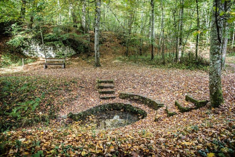 Au cœur de la forêt domaniale de Loches – Boucle vélo n°2-2
