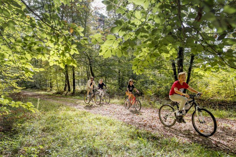 L'échappée royale – Boucle vélo n°1-1
