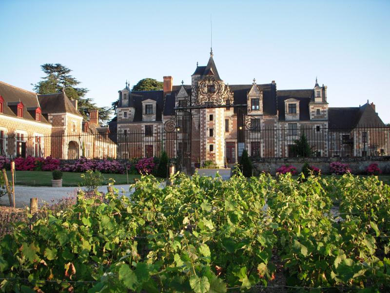 Le château de Jallanges, à Vernou-sur-Brenne