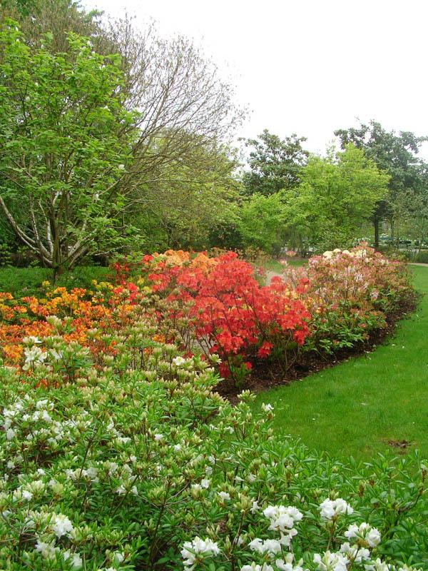Jardin Botanique-9