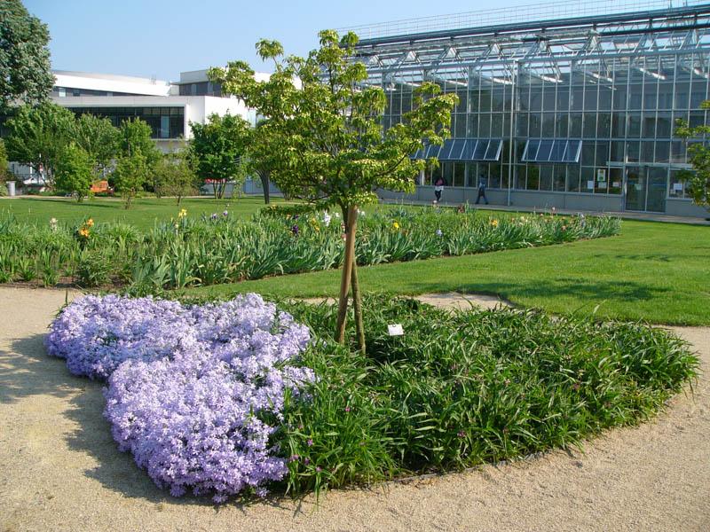 jardin botanique 10 - Jardin Botanique De Tours