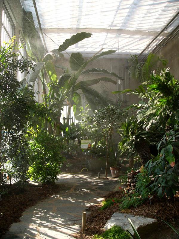 Jardin Botanique-11
