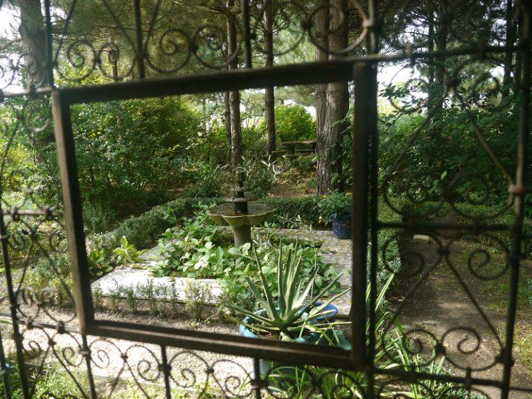 Le Jardin de Mireille en Touraine Angevine-8
