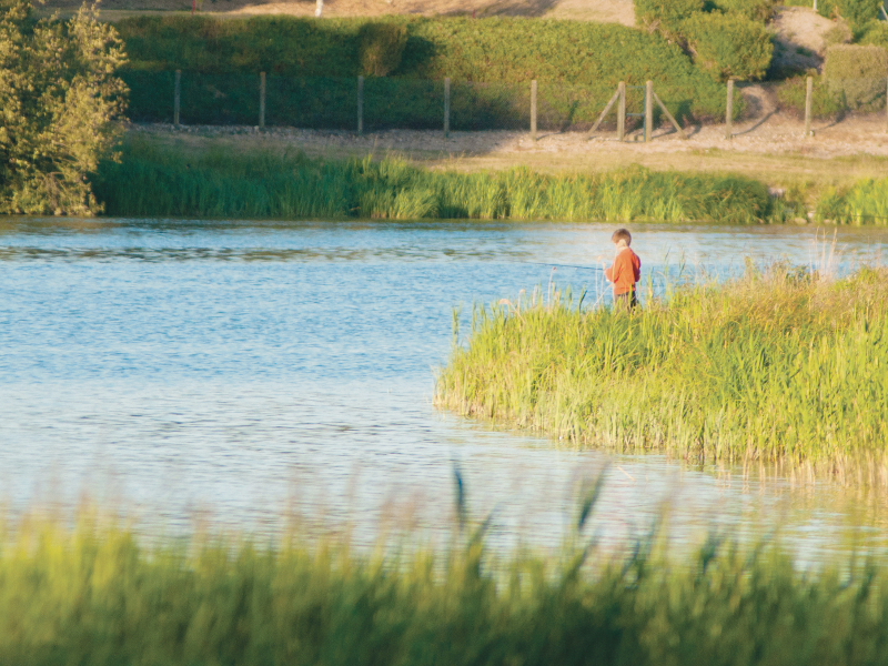 Lac de Rillé-3