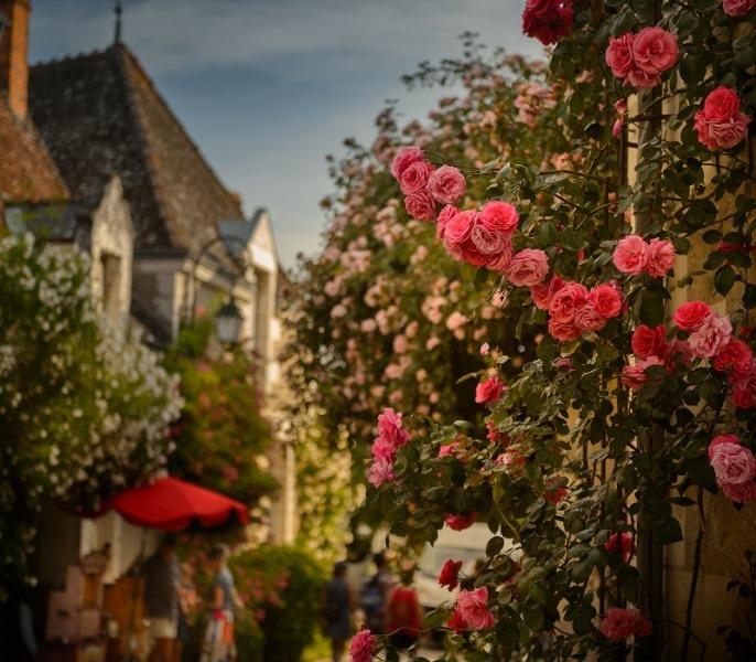 La rose dans la vallée – Boucle vélo n°3-3