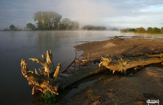 Loire Aventure, balades libres ou guidées à bord de canoës Canadiens-4