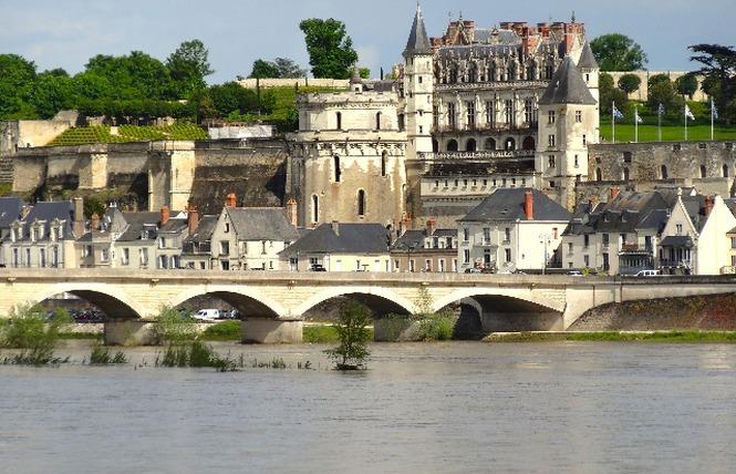 Loire Aventure, balades libres ou guidées à bord de canoës Canadiens-6