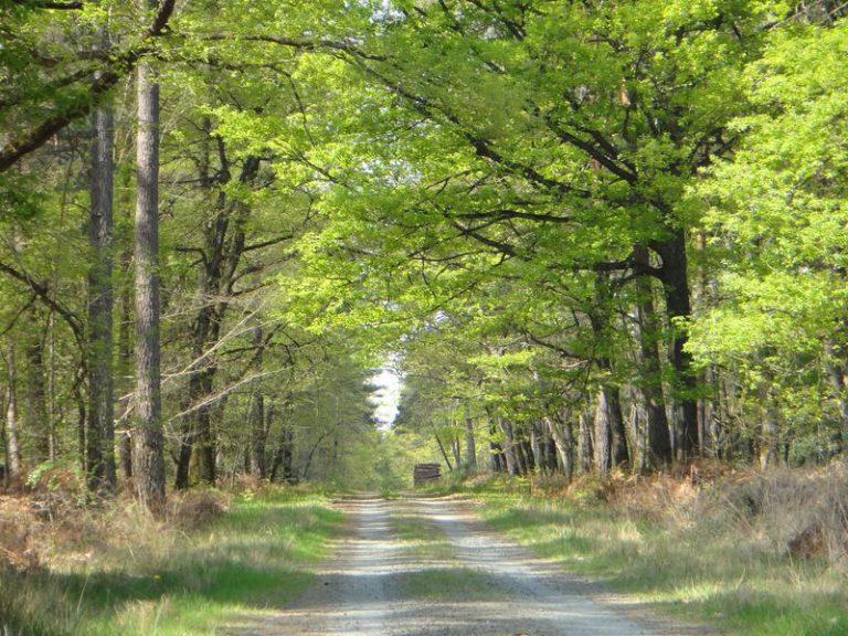 Val de Loire écotourisme-1