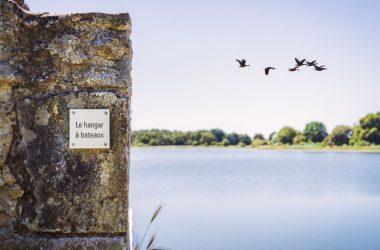 Randonnée de l'étang du Louroux