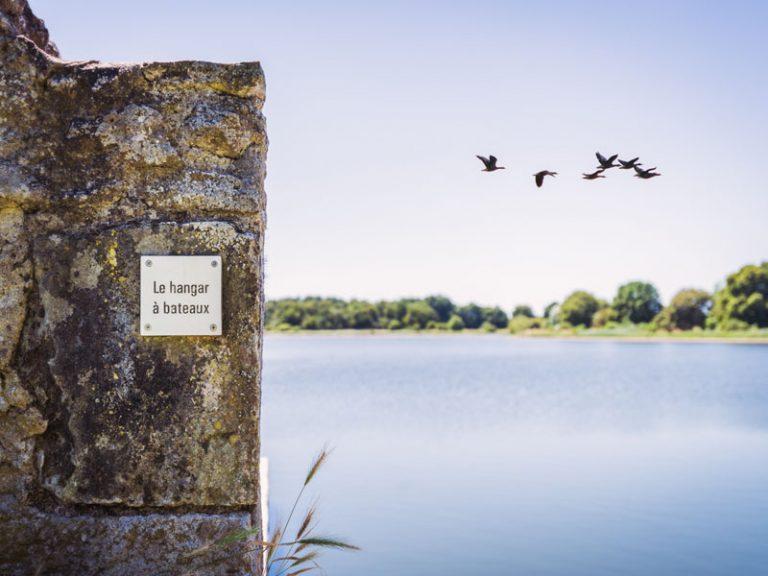 Randonnée de l'étang du Louroux-1