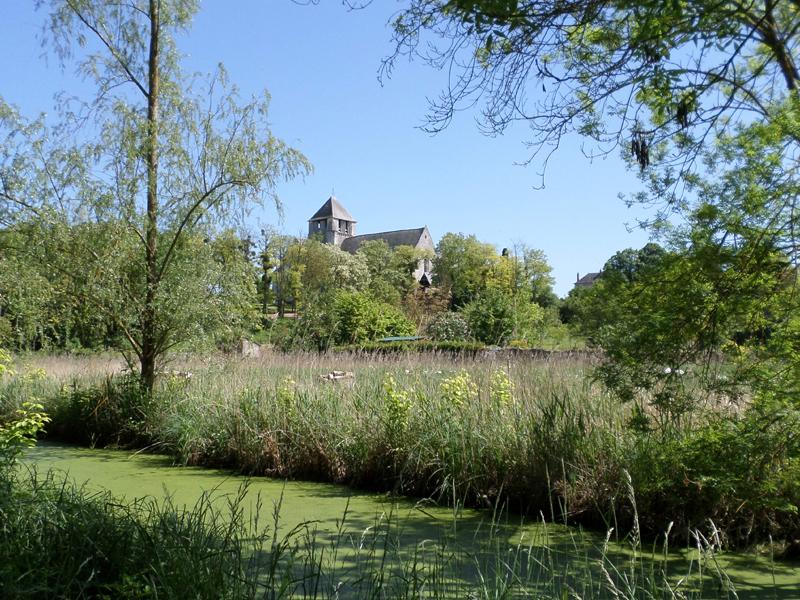 Randonnée le long du canal des moines - Cormery