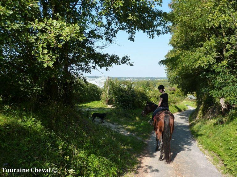 Touraine Cheval-8
