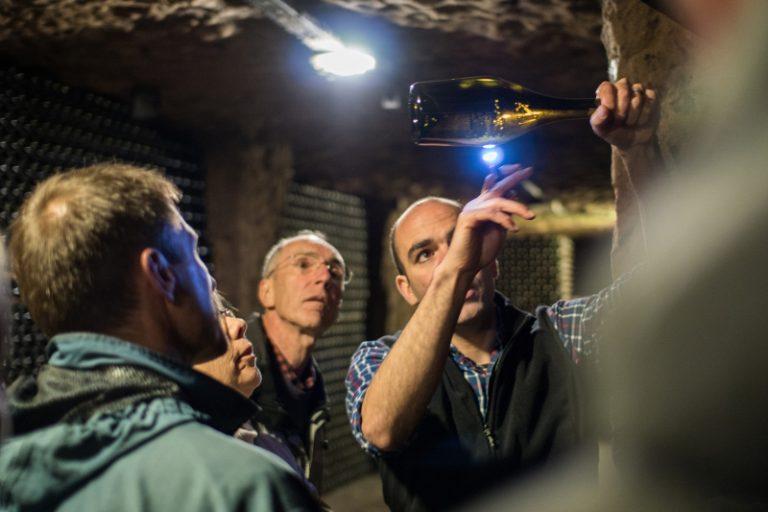 Vinoloire Wine-tours-2