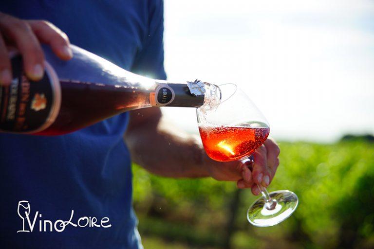 Vinoloire Wine-tours-21