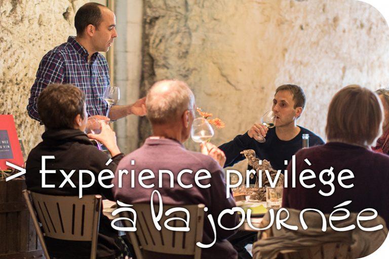 Vinoloire Wine-tours-10