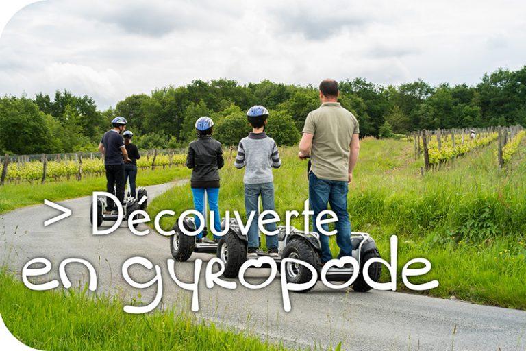 Vinoloire Wine-tours-12