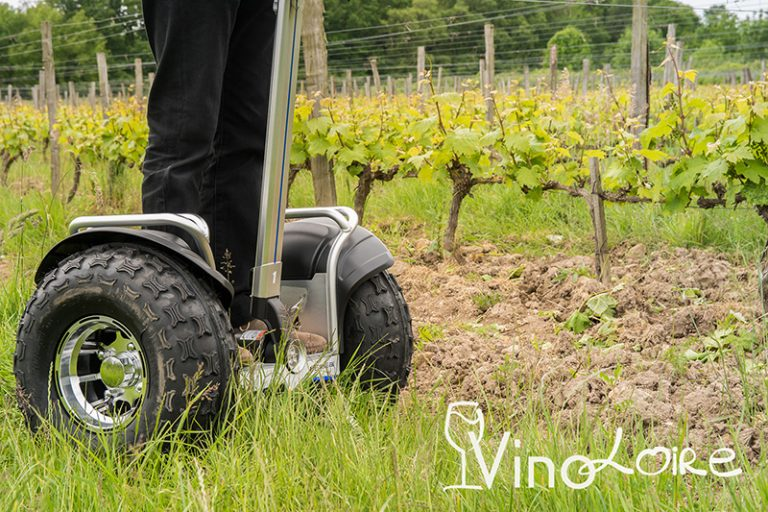 Vinoloire Wine-tours-14