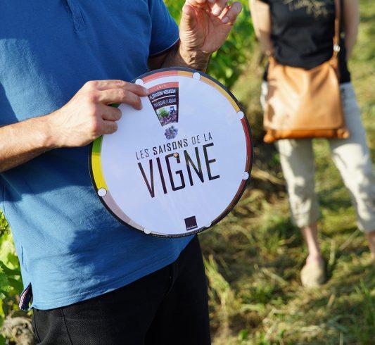 Vinoloire-3
